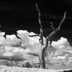 drift cloud ({ jh E }) Tags: austin nikon texas enchantedrock fineartphotography austinphotographer nikond800 fricafra jeffervin {jhe} jeffreyhervin texasphotographe