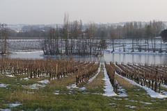 Lac à Saint-Georges Saint-Emilion en Hiver