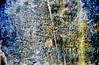 Revolutionary War Grave Stone (stephenl123) Tags: usa war poem minolta headstone revolutionary maxxum verse