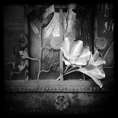 Still Lives: Passy (Lumilyon) Tags: bw cemeteries stilllife france graveyards atmosphere graves digitalphotography passy burialgrounds artjournals passycemetery iphoneography lumilyon nettieedwards