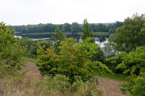 Gifhorn Kranichsmoorsee 110616 043-2.jpg