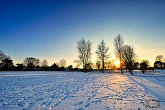 Frozen city (Phima_karntiang) Tags: park uk light england snow tree nature landscape nikon britain united kingdom queens british caterham d5000 flickraward 1024mm flickraward5 flickrawardgallery