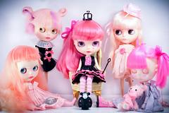 The Pink Queen's Court
