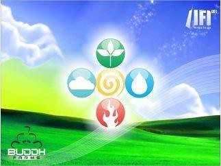 Buddh Farms on Greater Noida Expressway @ 3200 Per Sq.yd., Call 9999980895