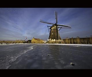 Dutch pride