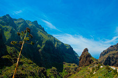 Masca, Tenerife - the most beautiful place on Earth. By Thomas Tolkien (Thomas Tolkien) Tags: copyright green beautiful tom forest landscape bluesky cliffs palmtree tenerife canaryislands tolkien islascanarias masca santiagodelteide geocity exif:iso_speed=200 exif:focal_length=18mm camera:make=nikoncorporation exif:make=nikoncorporation geostate geocountrys exif:lens=180700mmf3545 camera:model=nikond70s exif:model=nikond70s exif:aperture=16 hanswanderwegs warmerthanyorkshire