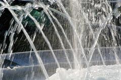 Geysers glacés (Edgard.V) Tags: winter paris france fountain agua aqua hiver iced inverno fontana fontaine parigi geysers gelado gelata xafariz