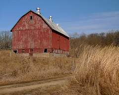 Southern exposure (LeicaNokota) Tags: leica old blue windows red sky grass wisconsin clouds barn doors farm vibrant board foundation driveway cupola weathered agriculture siding dairy wi dairyfarm farmstead cupolas barnboard stcroixcounty dlux4