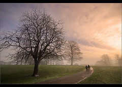 Just walking....... (Chrisconphoto) Tags: trees mist cold fog walkers sthelens sherdleypark