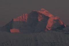 Sulegg - Wengen Jungfrau und Jungfrau mit dem schweizer Kreuz der Natur im Berner Oberland im Kanton Bern in der Schweiz (chrchr_75) Tags: schnee snow mountains alps ice nature water landscape schweiz switzerland wasser suisse swiss natur glacier berge neige alpen christoph svizzera gletscher eis landschaft glaciar 2012 februar 1202 ghiacciaio geleira lodowiec suissa gletsjer jtikk chrigu  glacir kantonbern liustik chrchr hurni chrchr75 chriguhurni oighearshruth  jtikkvaellus februar2012 bumgletscherglacier chriguhurnibluemailch albumgletscherglacier glaero albumzzz201202februar
