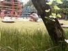 seneng nya klo jadi anak kecil (daEsUke_cHan) Tags: background jakarta ban taman anak lucu daun fotografi pemandangan kecil fotofoto burung menteng penghijauan kumpulkumpul rangkabunga