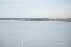Causeway (Tim Butler Photography) Tags: enterprise translink irishrail malahide 231 dedietrich