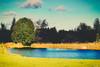 LIFE (CANPERS MEDIA) Tags: life blue sky cloud white tree green nature water grass clouds photo pond god glory live نور درخت عکس سبز ها طبیعت آب خدا زندگی زمین ابر دریاچه آبی سیاه سایه سفید چمن ابرها تالاب آفرینش