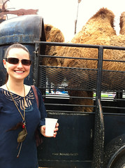 Erin and a shy camel