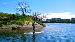 sup36 (vikapproved) Tags: up vancouver island stand whisper bc board paddle columbia victoria evergreen british paddling legend sup