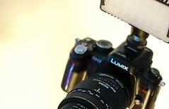 GH2 (fujinliow) Tags: macro sigma led micro sigma50mm fujin gh2 videoshooting sigma50mmf28 sigma50mmf28macro videosetup liow litepanels macrovideo dmcgh2 gh2video fujinliow liowfujin macrofilmmaking macrovideosetup