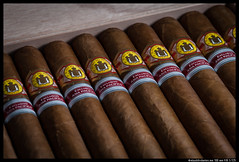 IMG_2963 (aizuddindanian) Tags: aniversario macro cuba cigar 100mm cuban pacifica tobacco lightbox 2012 aizuddin erdm strobist elreydelmundo danian canon5dmarkii mycigarblog