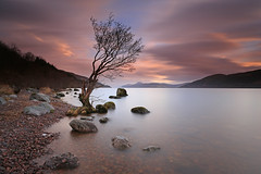 A high Loch Ness. (Gordie Broon.) Tags: longexposure sunset nature water clouds landscape geotagged photography scotland high scenery rocks alba scenic escocia hills lochness inverness lonetree schottland ecosse invernessshire scozia scottishhighlands dores meallfuarmhonaidh inverfarigaig gordiebroon drumbay canon5dmklll
