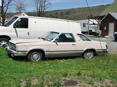 1982 MERCURY ZEPHYR (richie 59) Tags: usa cars car america outside us spring rust automobile unitedstates mercury antiquecar rusty vehicles faded rusted zephyr vehicle newyorkstate autos oldcar oldcars coupe oldvehicles automobiles rustycar nystate rustycars rustyoldcars americancars hudsonvalley fomoco whitecar whitecars 2door americancar motorvehicles fadedpaint ulstercounty foxbody twodoor motorvehicle mercurys uscar uscars midhudsonvalley fordmotorcompany 2013 oldrustycar ulstercountyny oldmercury mercuryzephyr 2010s mercurycoupe oldcoupe 1980scar americancoupe 1980scars townofulster richie59 april2013 townofulsterny rustymercury april282013 1982mercury mercuryzephyrcoupe 1982mercuryzephyr 1982zephyr foxbodymercury