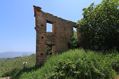 Window to the sky ... (Simos1968) Tags: trees green bluesky oldhouse simos1968