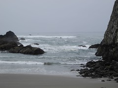 2016-04-27_DSCN5279 (becklectic) Tags: beach oregon pacificocean oregoncoast sealrock 2016