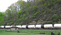 Trinity Industries Leasing Company & Deep Rock Refining Company tank cars (Horseshoe Curve, Pennsylvania, USA) (James St. John) Tags: cars car rock train tank pennsylvania norfolk deep railway trains company southern trinity horseshoe curve freight industries leasing altoona refining tilx dprx