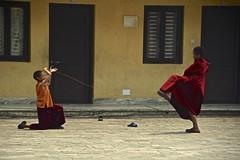 Young monks in Pharping Buddhist temple (Antonio Cinotti ) Tags: nepal nikon asia monks buddhistmonks kidsplaying phrasing youngmonks d7100 nikon1685 nikond7100 nepalroutes