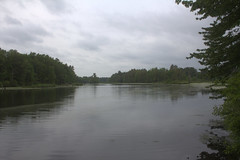 Nashua River (Br. Clement, O.P.) Tags: forest river outside outdoors newhampshire nashua nashuariver