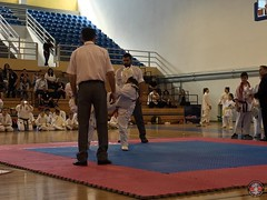stefanou_15_5_2016_knockdown_90