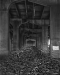 Dark Underpass (CDE1231) Tags: bridge bw field photography nc rocks belmont tunnel depth cde