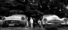 curves (Toky, Lily and George moments) Tags: buick vintagecar streetphotography retro oldie americancar collectorscar petrolguzzler
