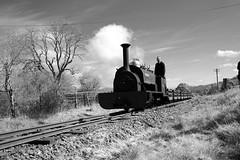 BLR 47277bwcr (kgvuk) Tags: trains locomotive railways steamtrain steamlocomotive winifred narrowgaugerailways blr balalakerailway rheilfforddllyntegid 040st quarryhunslet dolfawrcrossing