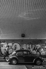 Debajo del puente. (rogersrincon2893) Tags: puente seor bw vocho debajo arquitectura grafitti