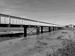 Railway Bridge, Shoreham. Sussex. (ManOfYorkshire) Tags: railway train bridge river adur span spanning sussex uk england blackandwhite bw monochrome image steel metal supports tide tidal 1893 history western coastway 305metres long water sea