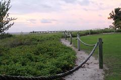 IMG_0005 (alannahberkeley) Tags: pier rope yellowflowers pompanobeach