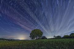 ST zona Sur Fuente Piedra (jamp_foto) Tags: light naturaleza tree luz nature lines night stars noche photo beam estrellas antequera lineas haz circumpolar jamp jampfoto