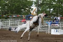 Blythewood Rodeo 2016-74 (Perry B McLeod) Tags: sc cowboys barrel bull racing bulls riding rodeo cowgirl calf saddle bronc blythewood roping ipra