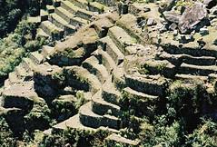 Machu Picchu 3 - 02