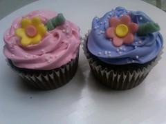 Cupcakes by Lexie