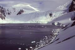Orne Harbour (Delphinidaesy) Tags: minolta antarctica x700 orneharbour