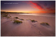 Dune waves (Dylan Toh) Tags: landscape photography kangarooisland everlook thepowerofnow