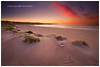 Dune waves (Dylan Toh) Tags: landscape photography kangarooisland everlook ☆thepowerofnow☆
