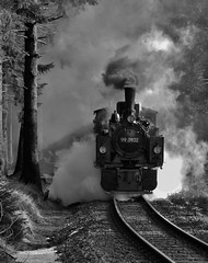 Logging train? (tedmcavoy) Tags: train railway steam brocken locomotive harz narrowgauge hsb harzerschmalspurbahnen metregauge