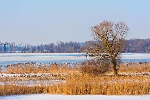Cold lake landscape by Tambako the Jaguar, on Flickr