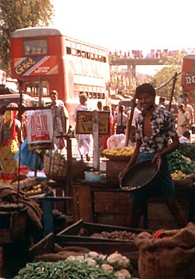 Man at Market