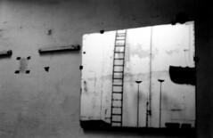 M2 (yannmerlin) Tags: portraits photographie paysages leicam7 photographienoiretblanc photographieargentique photographieartistique photographiedart chambre4x5 photographeparis yannmerlinphotographe photographeportraits elmar28de50 portraitmathieukassovitz portraitbarbetshroeder photographiedauteur yannmerlin