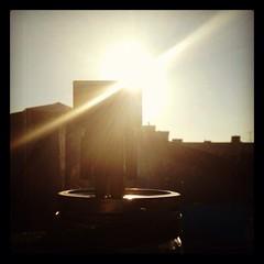 13/52: Danbo morning (aebphoto) Tags: sun sunlight window office spring sunburst frommyphone iphone week13 danbo 1352 project52 danboard week1352 revoltechdanbo instagram iphone4s worldofdanbo danbo52