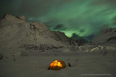 Selffjord, Lofoten, aurora borealis (Wildernesscapes Photography) Tags: from camping norway stars view you photos or tent illuminated aurora glowing everyone northern lofoten northernlights auroraborealis johnathanesper selfjord wildernesscapesphotography