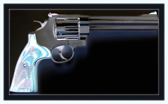 44 Mag, S&W 629 Classic processing (Thai pix Wildlife photography,,) Tags: thailand sw 44mag gunsrifle thaipixwildlifephotography