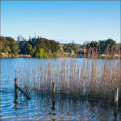 Across The Pond (*ian*) Tags: park blue sky house lake tree reed nature water grass forest square nationalpark ripple bank bluesky hampshire h2o fluid favourite liquid newforest beaulieu millpond bigemrg palacehouse gettysubmitted mygearandme mygearandmepremium mygearandmebronze mygearandmesilver mygearandmegold mygearandmeplatinum